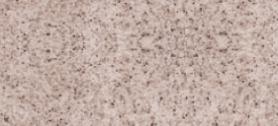 PS 070 granitas