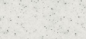 PS 130 granitas